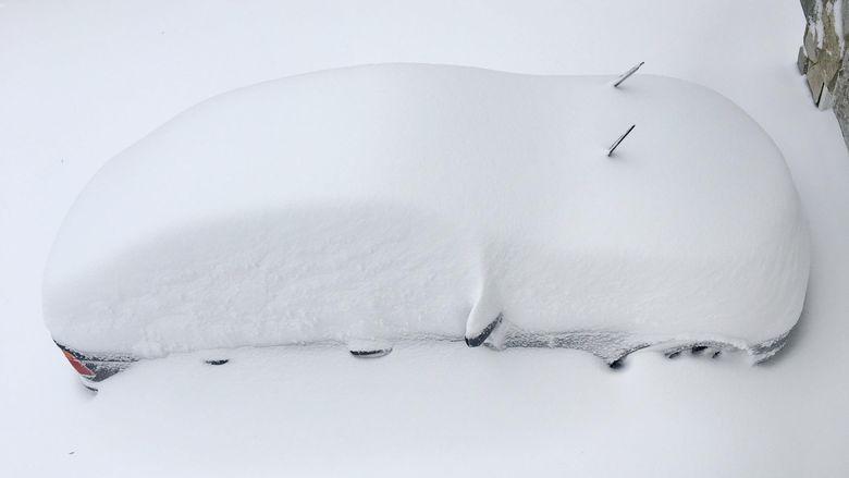 К чему снится снежок