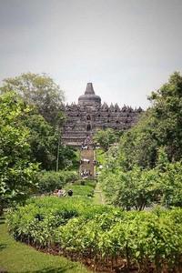 Candi Borobudur yang nampak dari kejauhan (Angela Jennifer Aroemrasni/dtraveler)