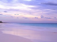 Pink Sands Beach saat pagi (wayfaring.info)