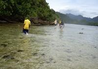 Menjelajah Pulau Pagang (Sastri/ detikTravel)