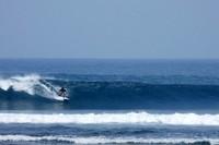Tingginya ombak di Pantai Tanjung Setia memberikan pesona dan daya tarik untuk pecinta surfing (tourismindonesiaonline.com)