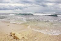 Pasir putih yang berpadu dengan ombak Pantai Tanjung Setia (Titisari Raharjo/dTraveler)
