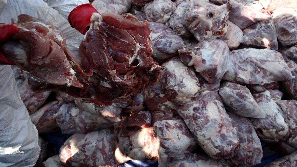 Begini Cara Daging Celeng Dikirim dari Sumatera
