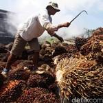 Malaysia Beli 37% Saham Perusahaan Sawit Peter Sondakh
