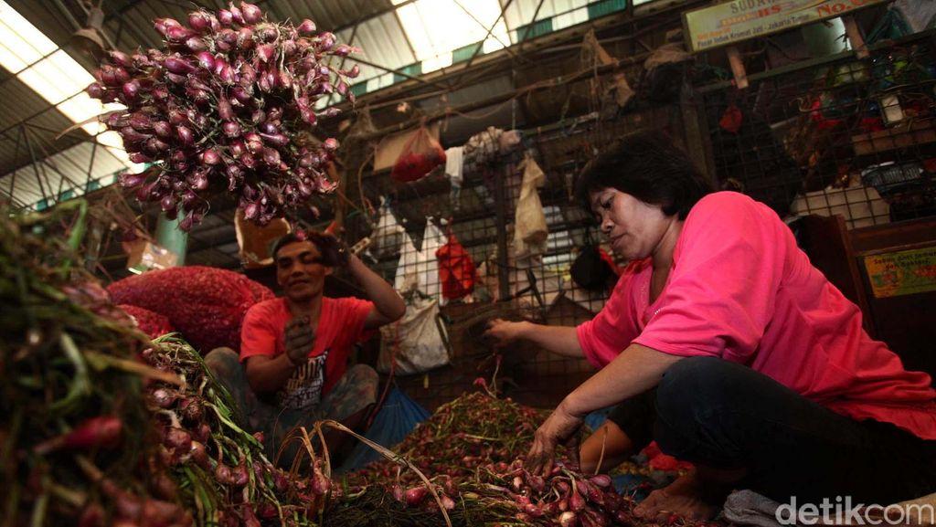 Amankan Pasokan Ramadan, Mentan Siapkan 2.000 Ton Bawang Merah