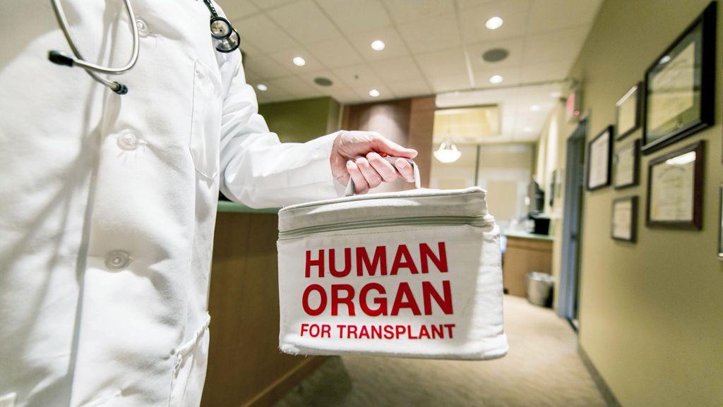 Riset: Usia Bukan Jadi Soal, Donor Ginjal di Usia 65 Tahun Pun Oke