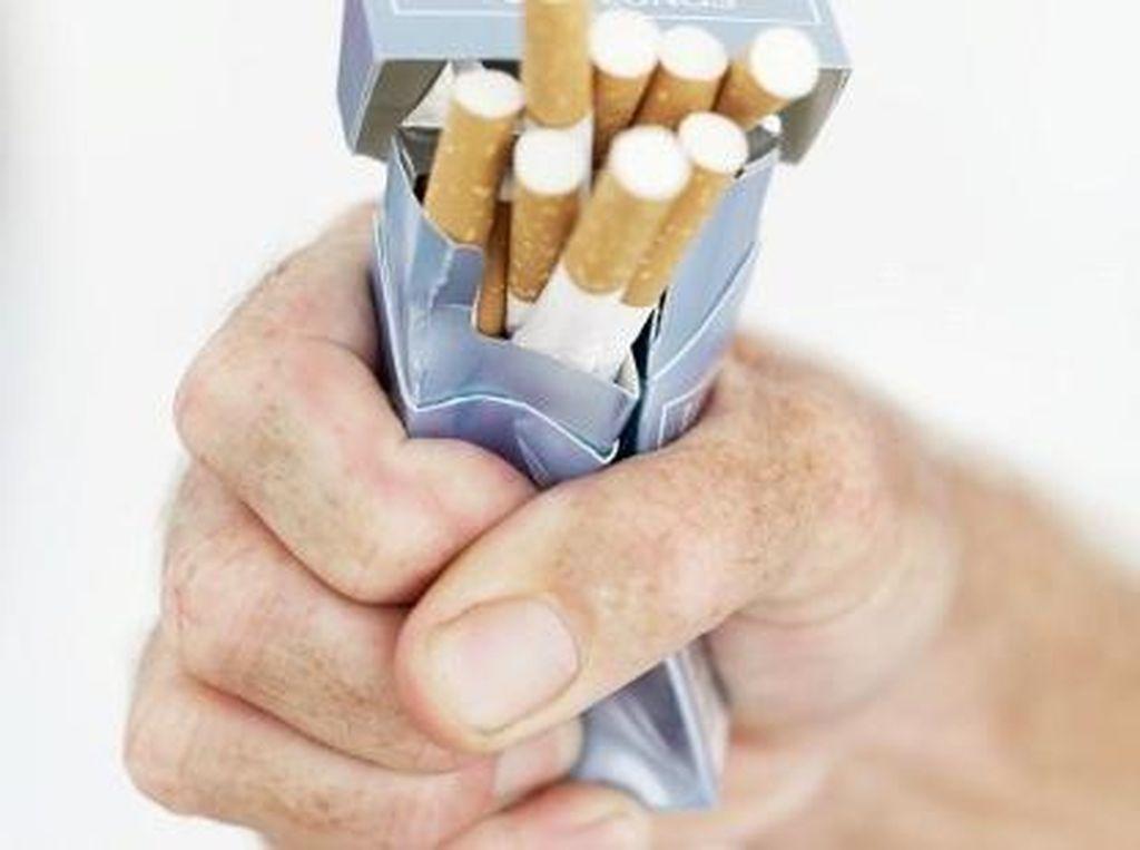 Rokok VS Liburan