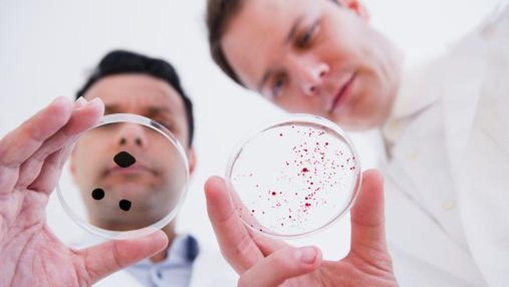 Peringkat Baru Bakteri Kebal Obat Paling Berbahaya di Dunia