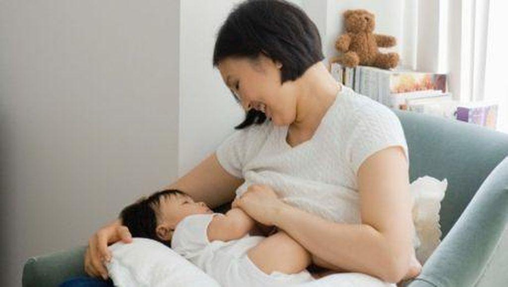 Diet Sehat untuk Ibu Pasca Melahirkan Agar ASI Lancar (1)