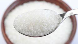 Gula Produksi PTPN XI Diuji Sample untuk Jaga Kualitas