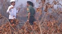 Pengadilan Perintahkan Presiden Keluarkan PP Cegah Kebakaran Hutan