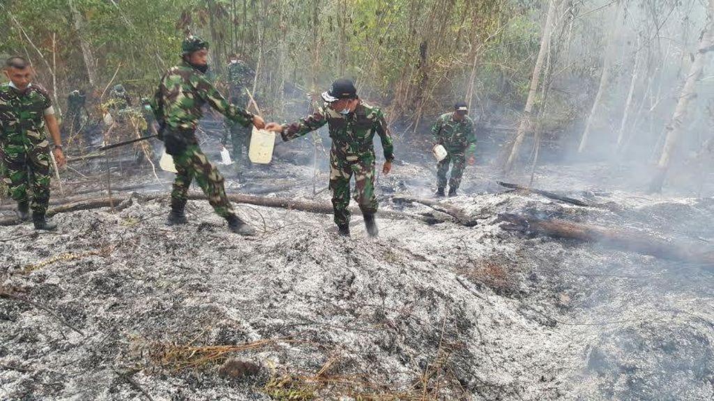Pertumbuhan Ekonomi 2015 Terkoreksi 0,5% Karena Kebakaran Hutan