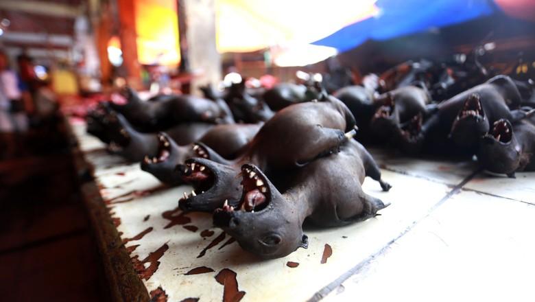 Kelelawar di Pasar Ekstrem Tomohon (Reno/detikTravel)