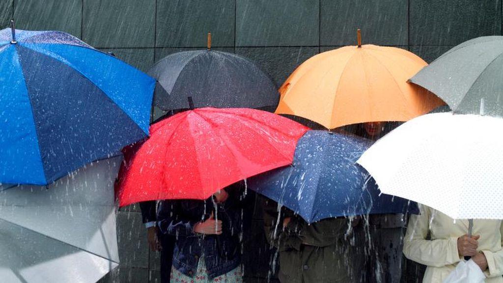 Nunnurella, Payung Antibasah yang Langsung Kering Saat Kena Air Hujan