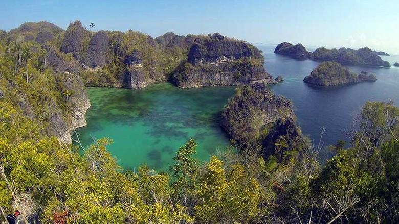 Image result for Pulau Manyaifun, Raja Ampat