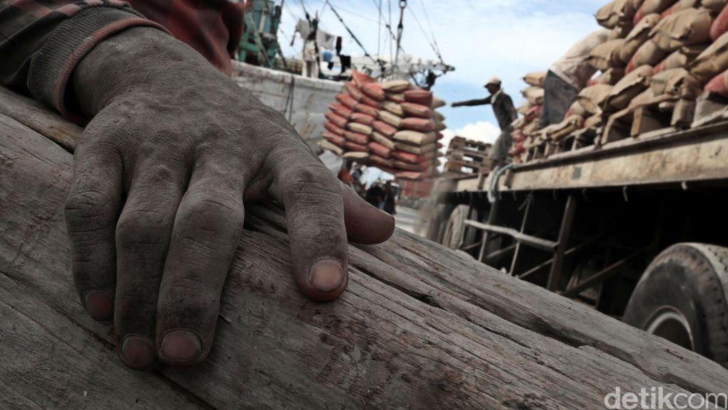 Hore!! Harga Semen di Papua Turun dari Rp 2 Juta Jadi Rp 500 Ribu