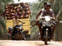 Ini Strategi Bakrie Sumatera Lunasi Utang Jangka Panjang Rp 9,4 T