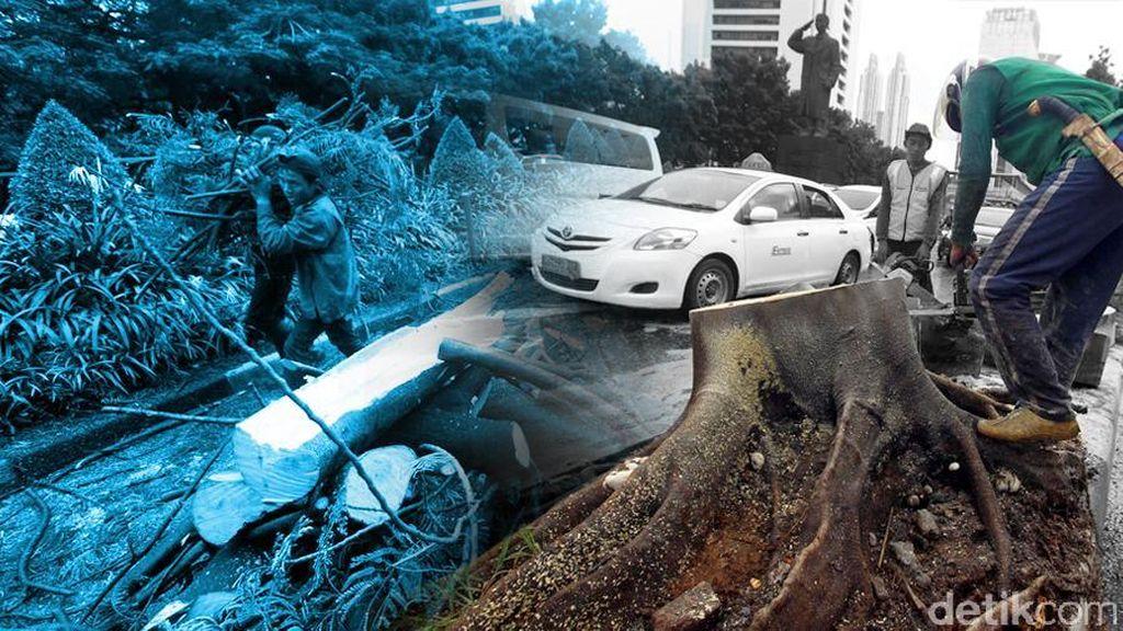 Terbanyak di Tebet, Ada 8 Titik Pohon Tumbang di Jakarta