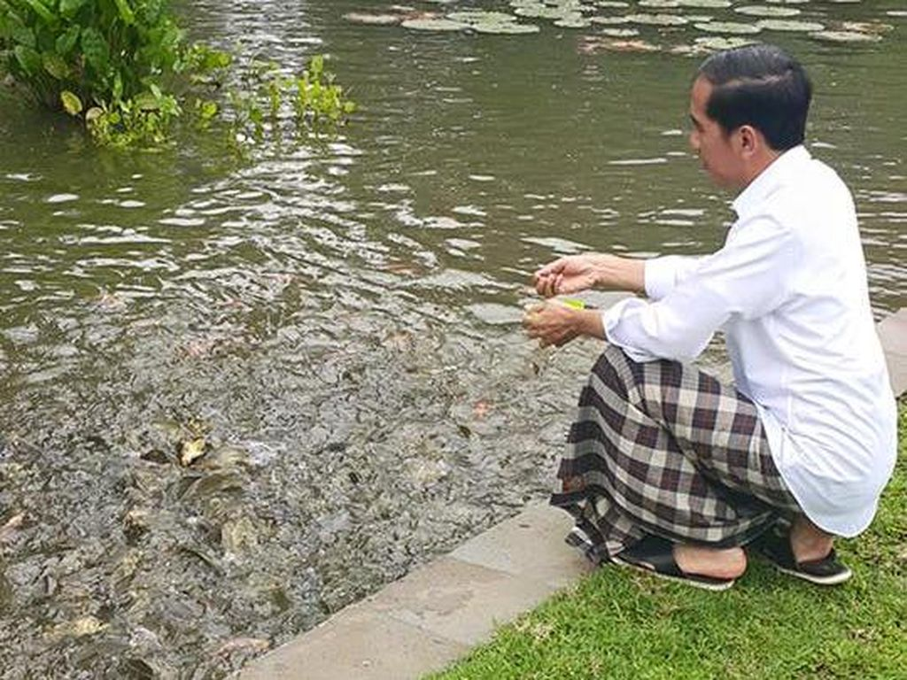 Tinggal di Istana Bogor, Ini Hiburan Jokowi Tiap Sabtu dan Minggu