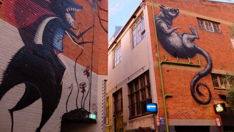 Sebagai ibukota Western Australia, Perth menyuguhkan wisata yang semakin beragam untuk wisatawan. Selain landmark kota seperti Bell Tower dan Kings Park, traveler juga bisa blusukan di tengah kota untuk menemukan mural-mural keren (Sastri/detikTravel)