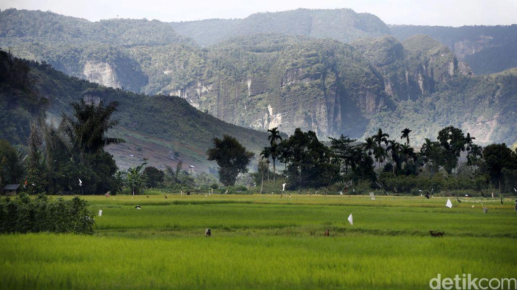 Peringkat Ketahanan Pangan RI Kalah dari Vietnam, Malaysia, dan Thailand