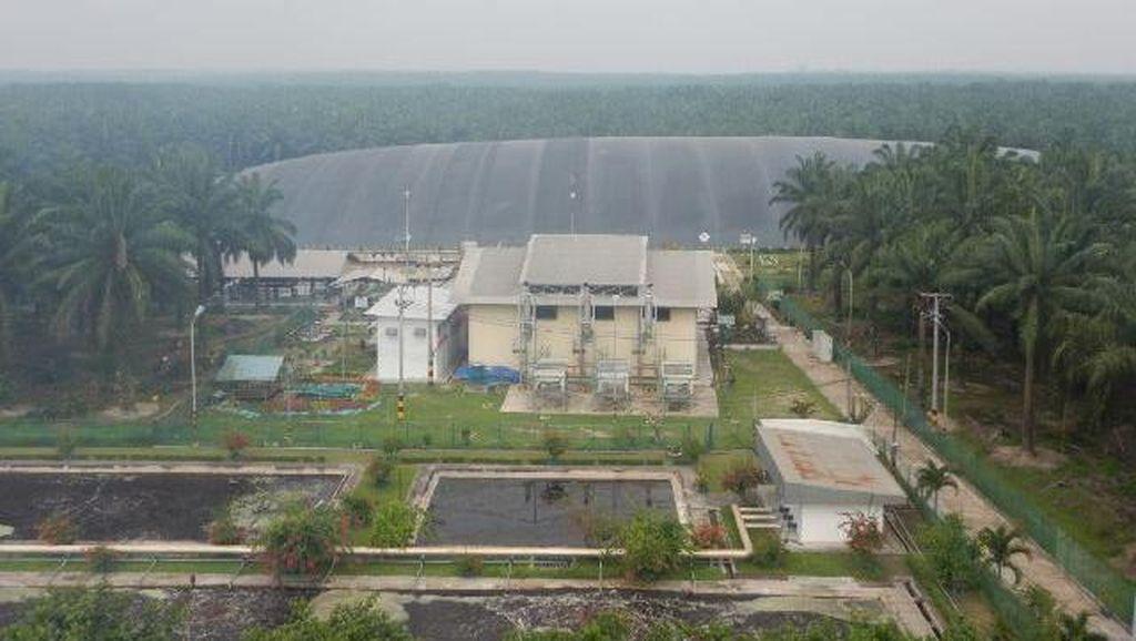 PLN dan Perusahaan Sawit Kerja Sama Salurkan Listrik dari Pembangkit Biogas