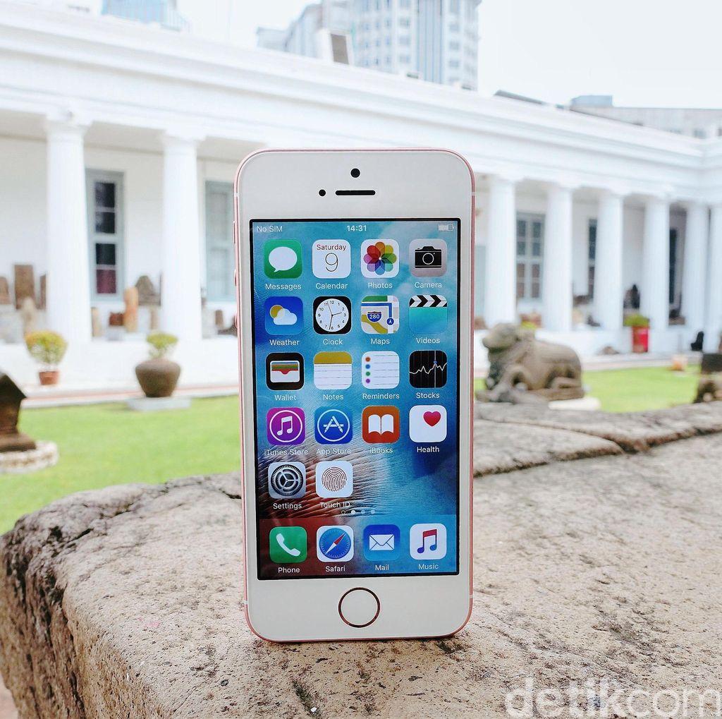 iPhone SE Anyar Meluncur Akhir Agustus