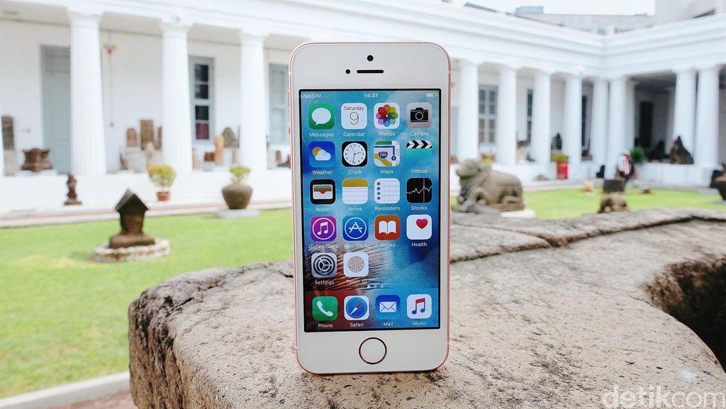 iPhone SE Jadi Ponsel Pertama yang Dibuat di India