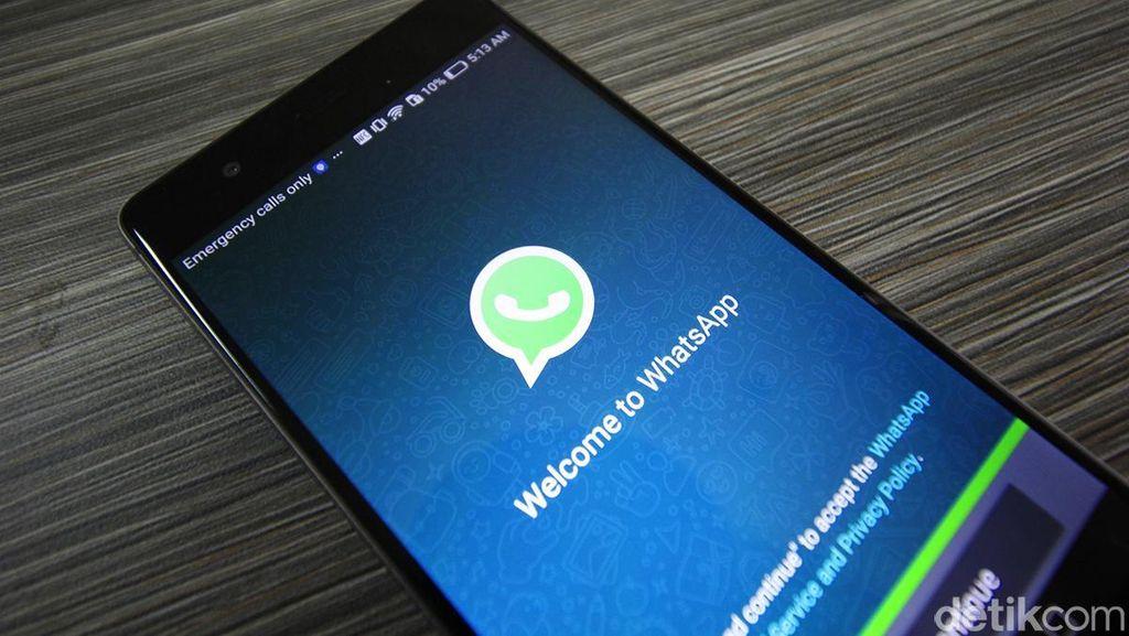 Gulirkan Fitur Anyar, Ini Pesan CEO WhatsApp