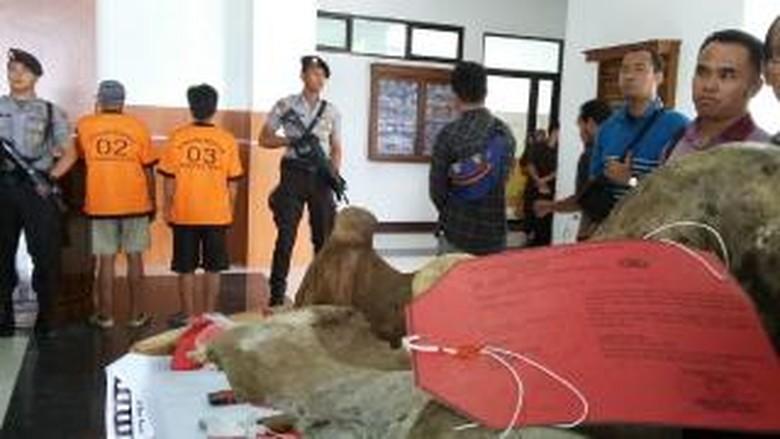 Polda Jambi Tangkap 2 Pembunuh Gajah Sumatera