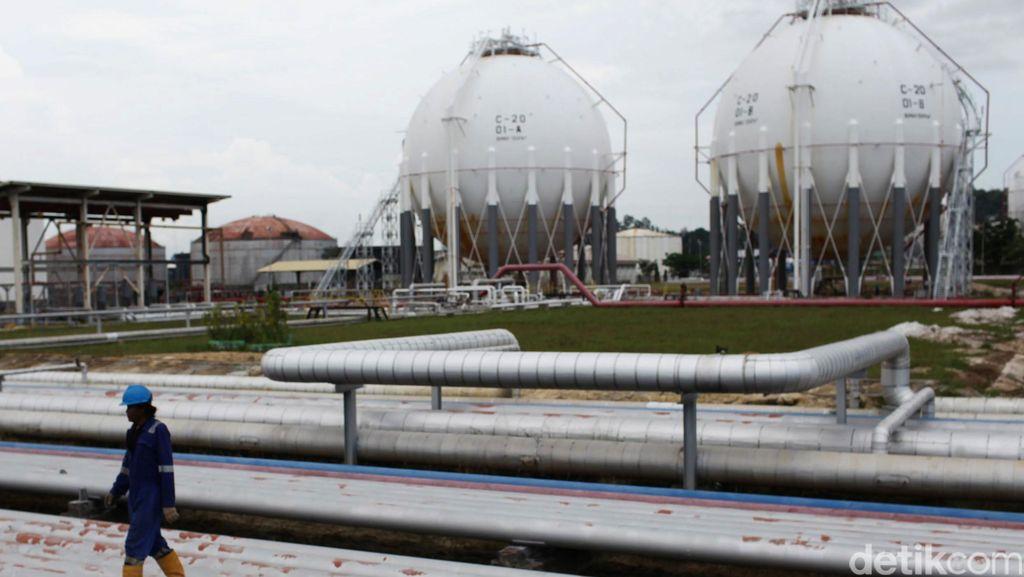 Pertamina Punya Kilang BBM di Papua, Tapi Kesulitan Cari Minyak