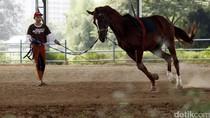 Kuda Sudah Diangkut, Pembangunan Arena Berkuda di Pulo Mas Lancar
