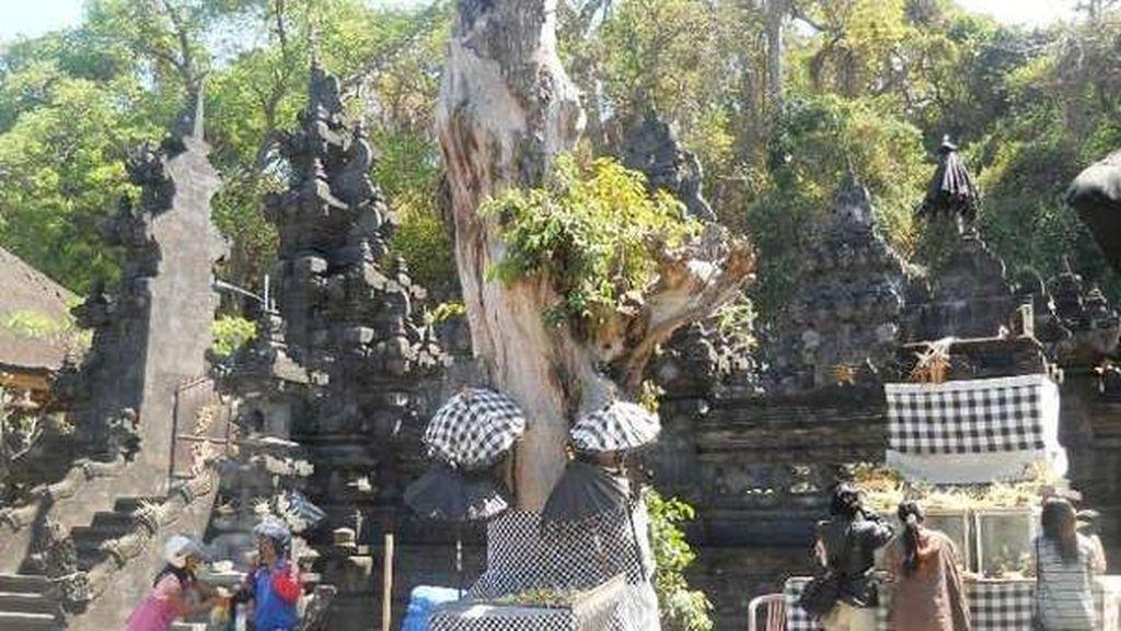 Unik! Pura Goa Lawah di Bali yang Punya Ribuan Kelelawar