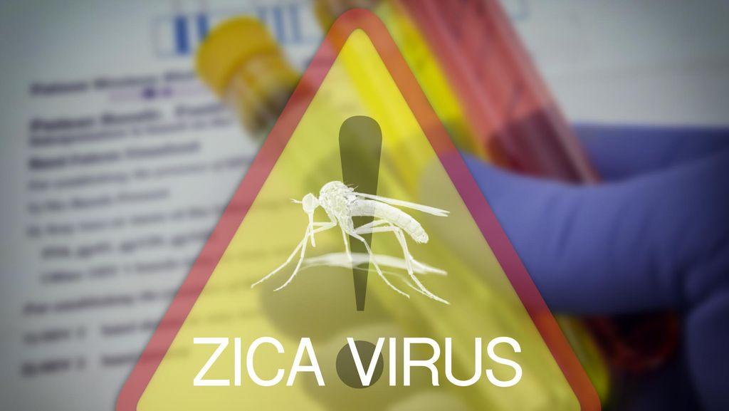 Dampak Lain Virus Zika: Bisa Mengecilkan Testis Pria