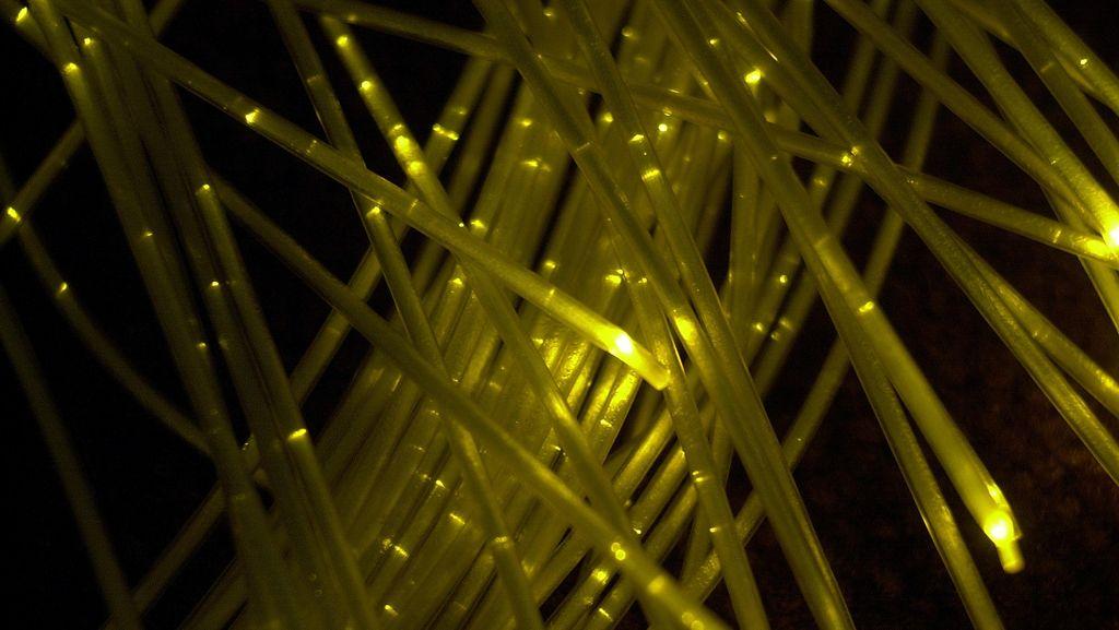 Kabel Optik di NTT Putus