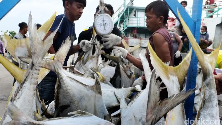 Pemprov DKI Segera Realisasikan Restoran Apung di Muara Angke
