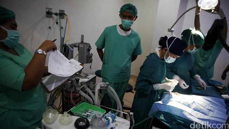 Dokter Ingin Punya Rumah Sakit Sendiri? Begini Caranya