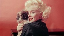 Rumah Terakhir Marilyn Monroe Sebelum Meninggal Dijual Rp 91 M