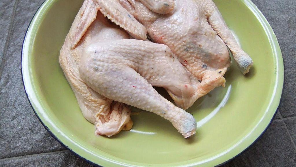 Konsumsi Ayam Kampung di RI Masih Rendah