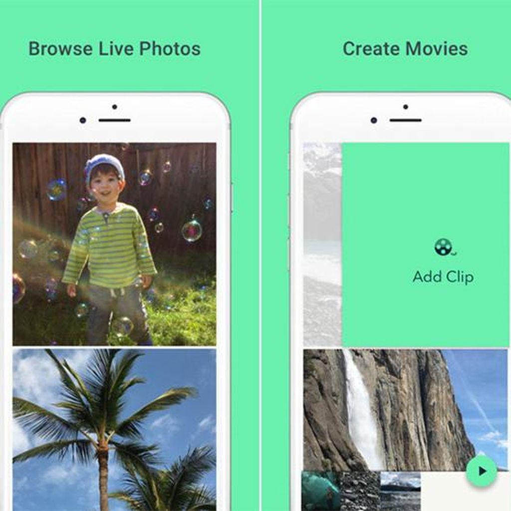 Aplikasi Ini Ubah Live Photos Jadi GIF