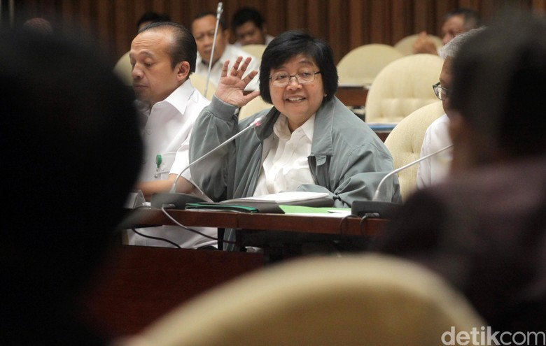 Menteri Siti: Kawasan Hutan Kita Setop untuk Ekspansi Sawit