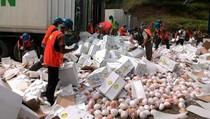 Ratusan Ton Buah Impor asal Tiongkok Dimusnahkan