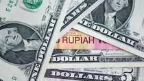 9 Startup Lokal Berebut Investasi USD 1 Juta