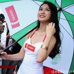 Wanita Cantik dan Seksi Bakal Hilang dari MotoGP?
