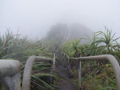 Ini Dia Tangga Menuju ke Surga di Hawaii