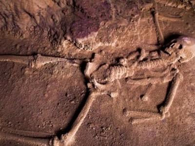 Bagaimana Pintu ke Neraka Ala Suku Maya?