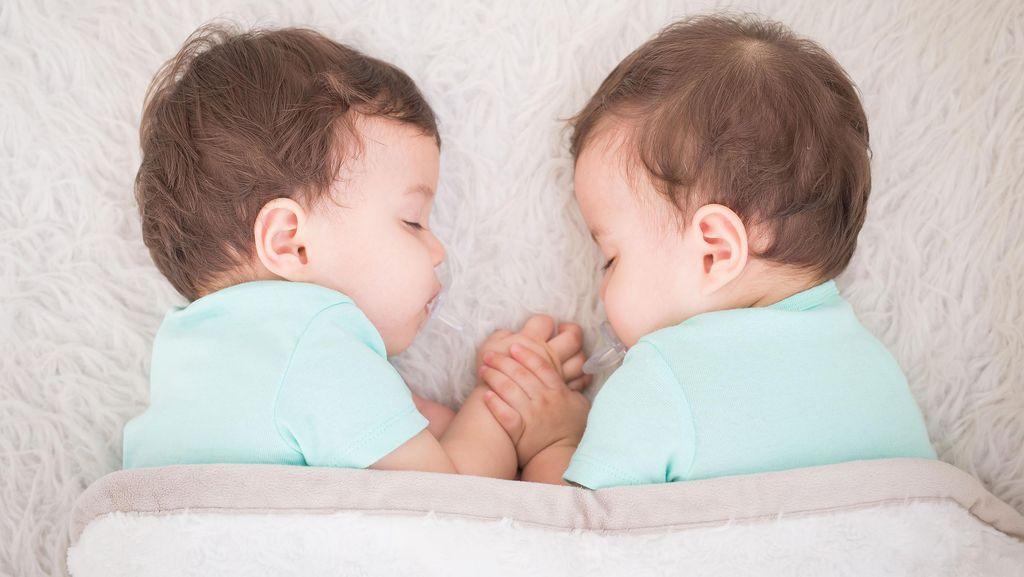 Fenomena Kembar Siam Masih Berselimut Misteri