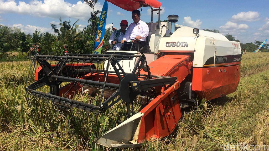 Turun ke Sawah, Mentan Sopiri Traktor di Lombok