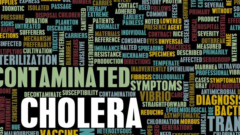 WHO: Kolera di Somalia Bisa Menginfeksi Hingga 50 Ribu Orang