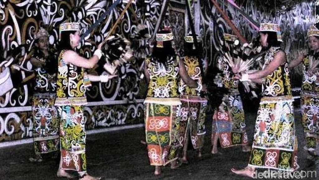 Sapi Desa Telok untuk Nikah Gaib Panglima Burung-Nyi Roro Kidul